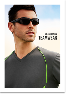 BizCollection2015 Teamwear-copy direct