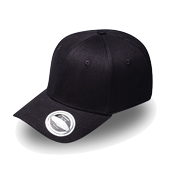 Pro Style Fitted Cap