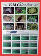 A3 Annual Wall Calendar
